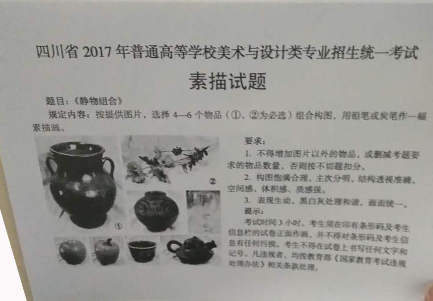 2017年四川美术联考/统考考题素描
