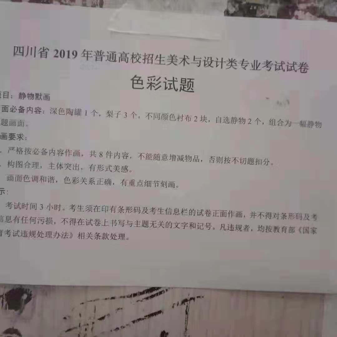 2019年四川美术联考/统考考题色彩