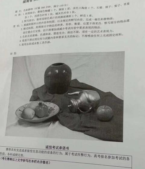 2019年湖南美术联考/统考色彩考题